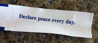 Declare peace 1